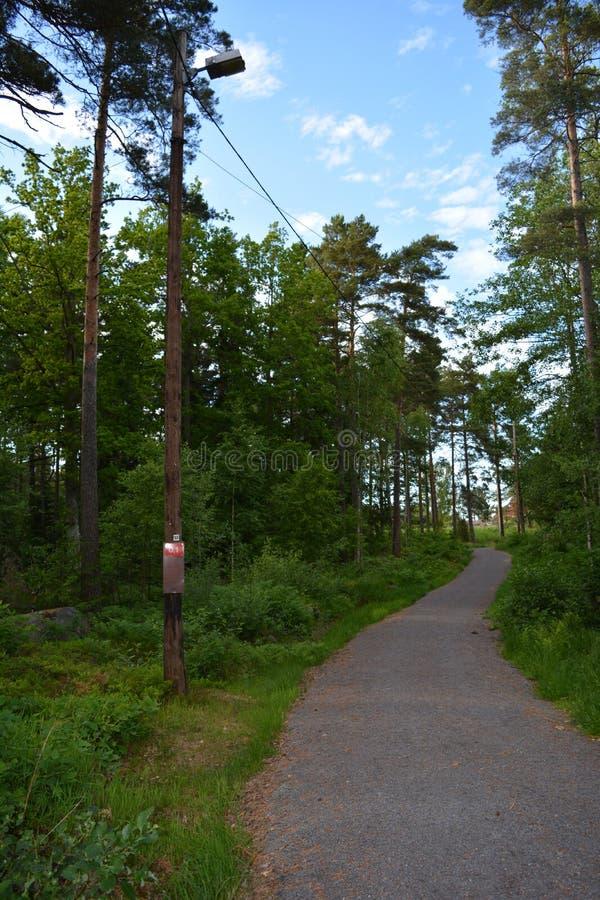 На greenway в Швеции стоковые фото