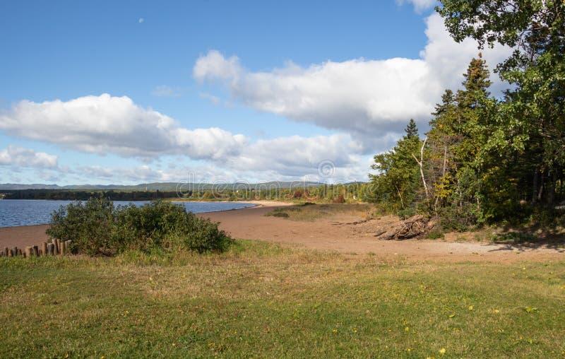 На nfdl следа озера олен стоковое фото rf