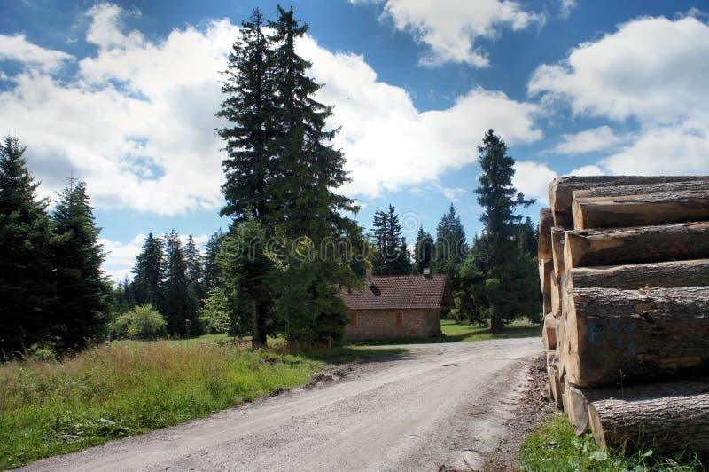 На Westweg в черном лесе, Германия стоковая фотография