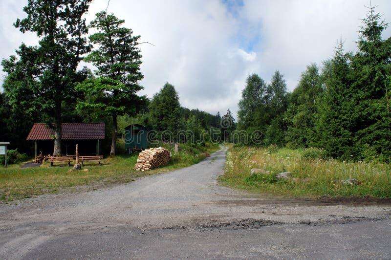 На Westweg в черном лесе, Германия стоковое фото