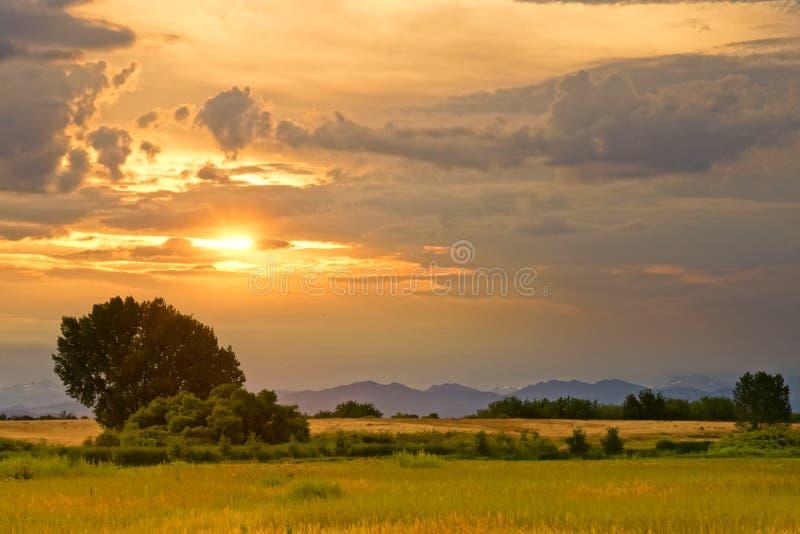 Небеса в июле стоковые изображения