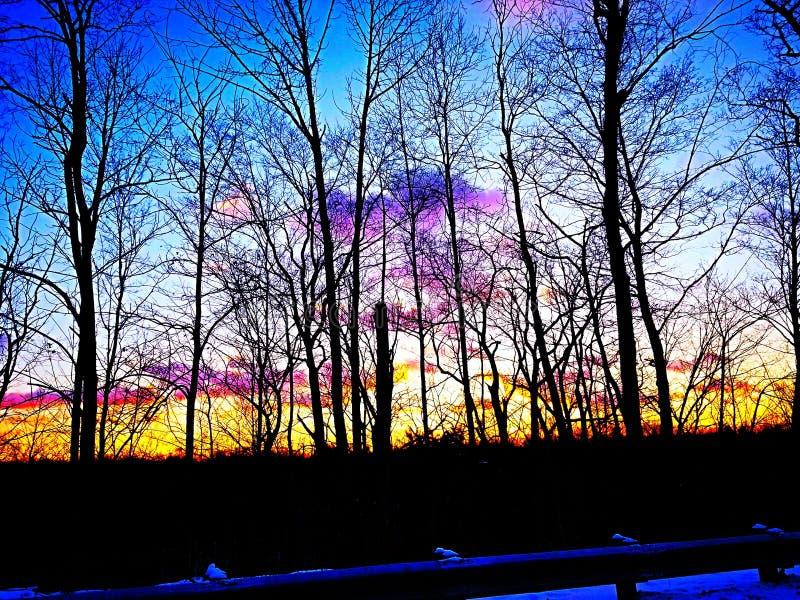 Небеса конфеты хлопка стоковая фотография