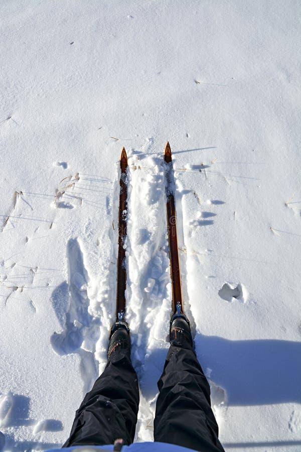 Download Небеса на A готова к использованию в снеге Стоковое Фото - изображение насчитывающей небеса, хряков: 40587884
