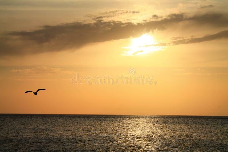 Небесный путь стоковое фото