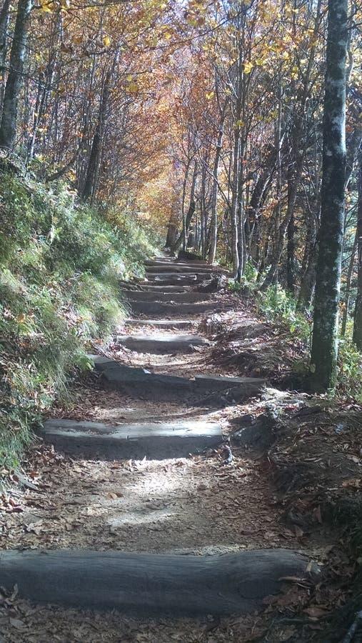 небесный stairway стоковая фотография