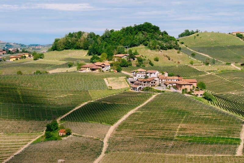 Небольшая деревня среди виноградников Langhe Витикультура около Barolo, Пьемонта, Италии, наследия ЮНЕСКО Barolo, стоковое изображение rf