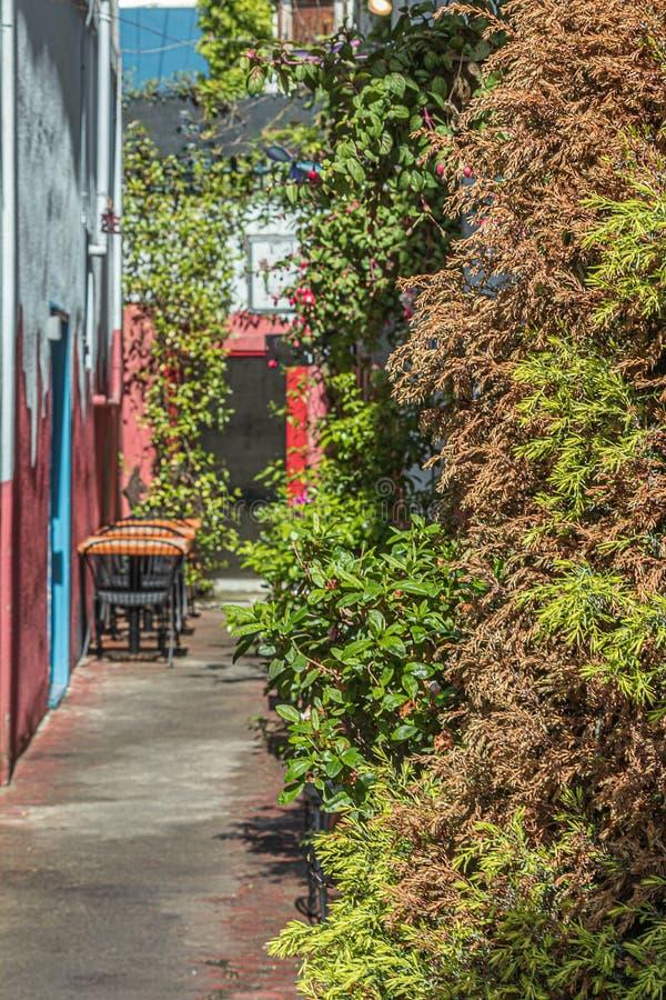 Небольшая зона отдыха кафа для кофе утра в идя переулке стоковая фотография rf