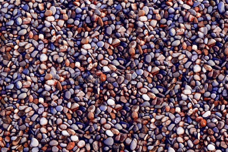 Небольшая песчинка, много цветов на предпосылке стоковая фотография rf