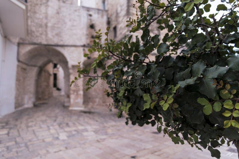 Небольшая площадь в Ceglie Messapica, Salento, Италии стоковые изображения rf