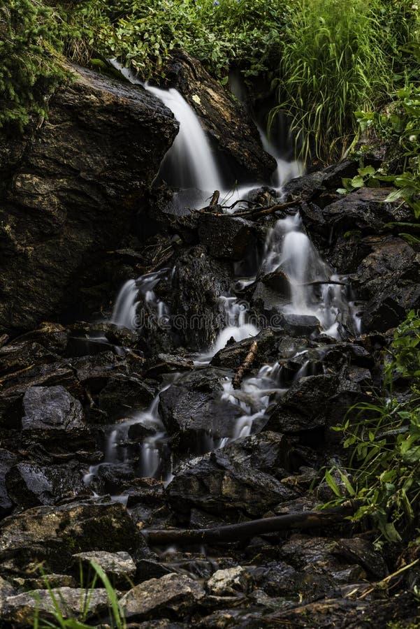 Небольшие водопады в потоке стоковые фотографии rf