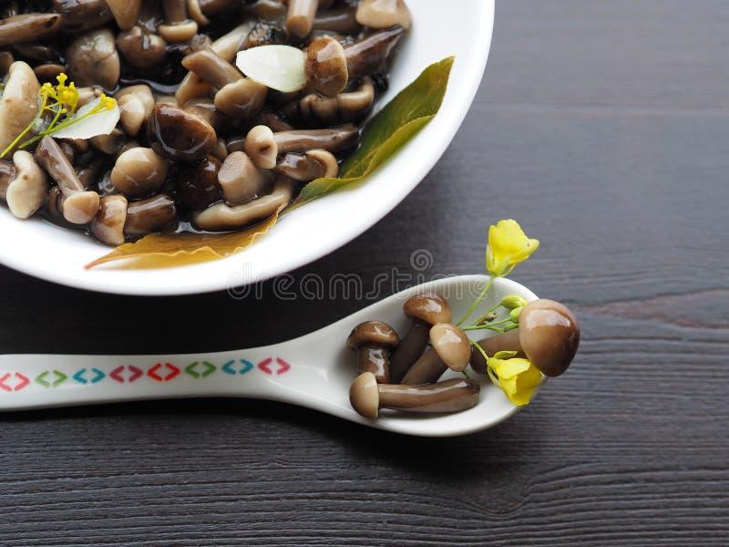 Небольшие грибы в конце-вверх ложки стоковое изображение rf