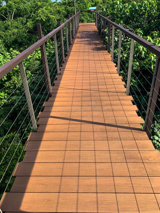 Небольшие деревянные пешеходный мост или дорожка в парке стоковое изображение