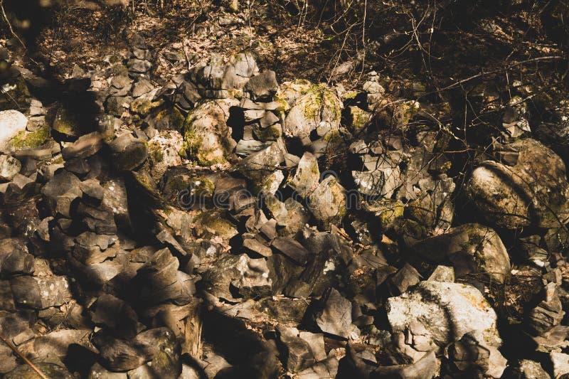 небольшие каменные башенки в скульптурах камня леса стоковая фотография rf