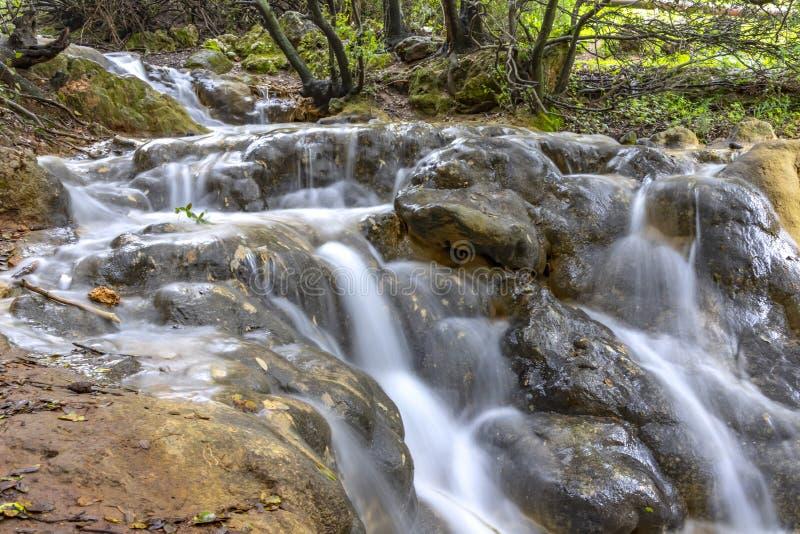 Небольшие каскады водопадов на потоке горы весной Река Parod Израиль стоковое изображение rf