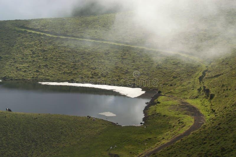 Небольшое озеро стоковое изображение rf