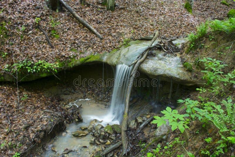 Небольшой водопад падая на утесы стоковое изображение rf