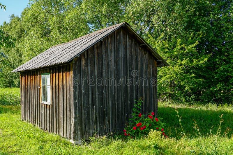Небольшой деревянный дом в сельской местности с красными цветками на переднем плане стоковое фото