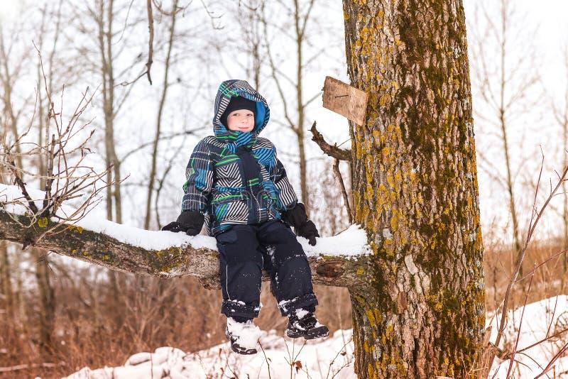 Небольшой малыш мальчика сидит на ветви дерева в лесе зимы стоковая фотография rf
