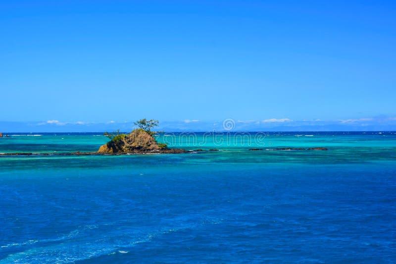 Небольшой островок с деревьями в голубом океане Южной части Тихого океана стоковая фотография rf