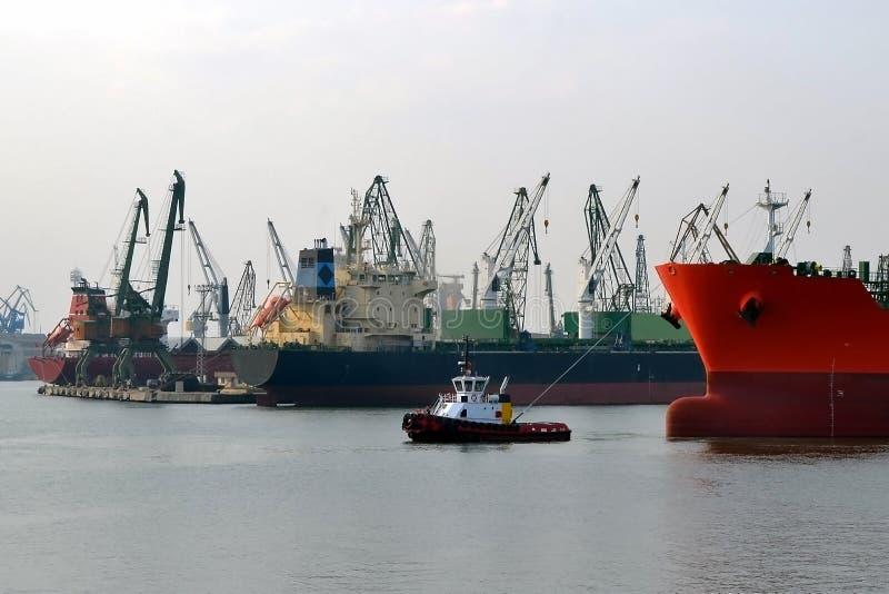 Небольшой пилотный корабль водит большой красный грузовой корабль на морском порте на windless день осени стоковые фотографии rf