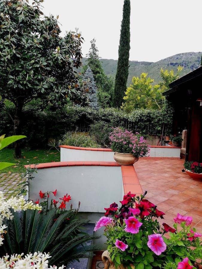 Небольшой сад с много красочных цветков стоковая фотография