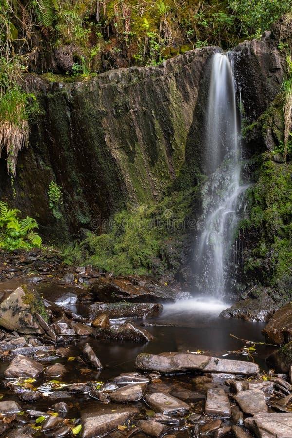 Небольшой spout водопада на каскадах закрепляет петлей прогулка в небольшой ирландской деревне Lisseycasey, долгая выдержка для т стоковые фото