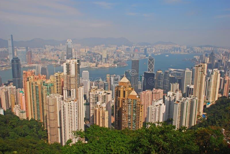 Небоскребы и зеленые деревья на острове Гонконга стоковая фотография rf