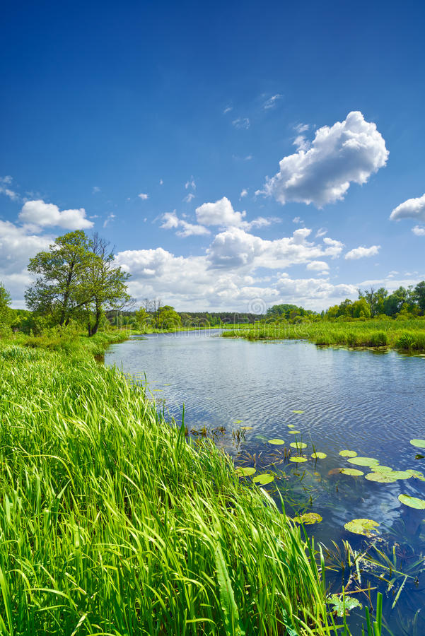 Небо ландшафта реки сладостного флага лета голубое заволакивает сельская местность стоковые фото