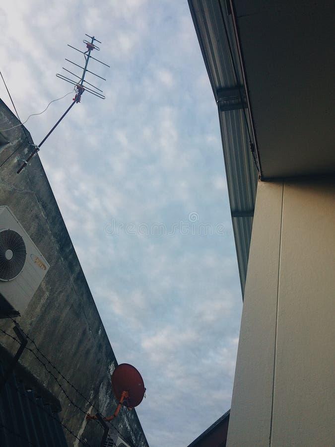 Небо в утре стоковые изображения
