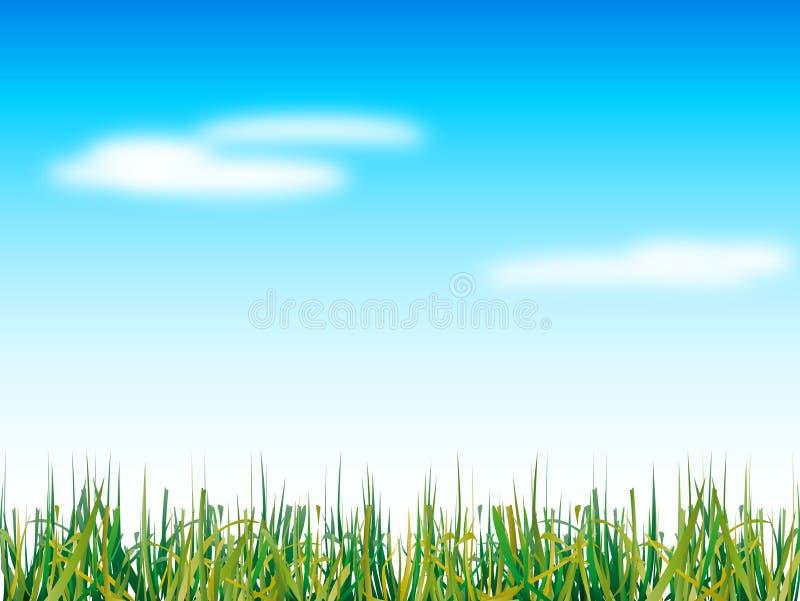 небо голубой травы естественное иллюстрация штока