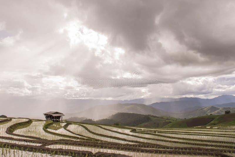 Небо горы поля стоковые фотографии rf