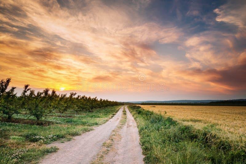 Небо захода солнца весны над дорогой испанской сельской местности открытой через pe стоковое изображение