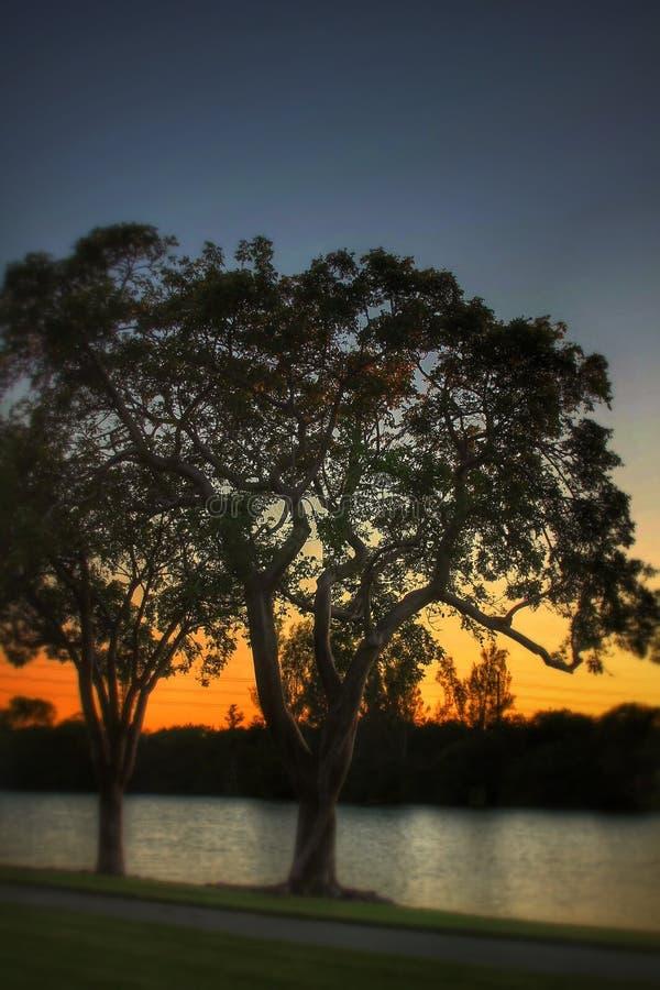 Небо захода солнца стоковые изображения rf