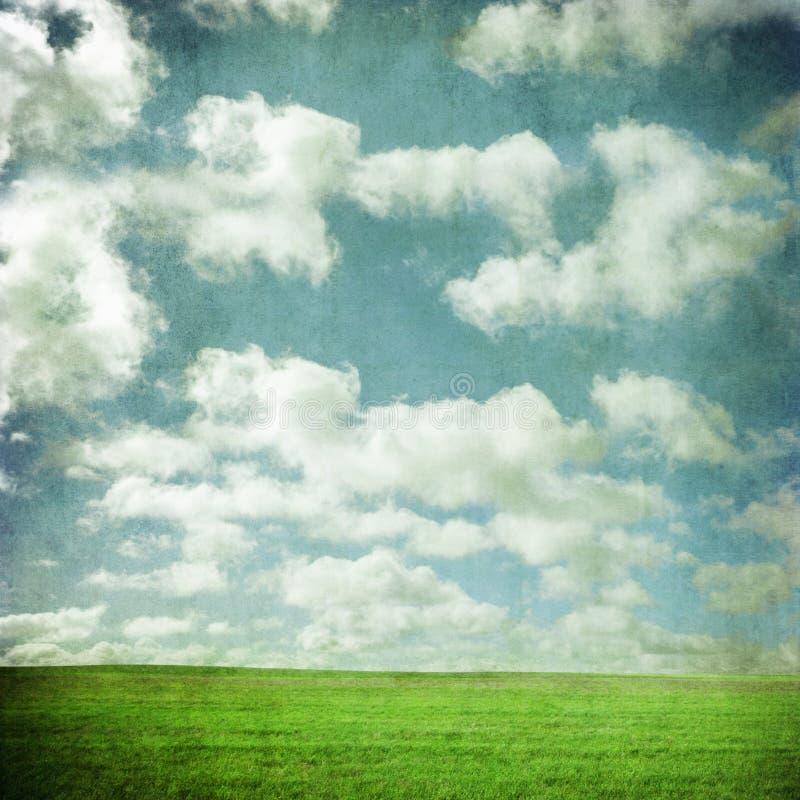 Небо и поле Grunge стоковое фото