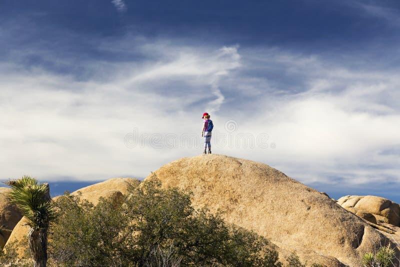 Небо Калифорния США ландшафта Больдэра национального парка дерева Иешуа маленького ребенка драматическое стоковое изображение