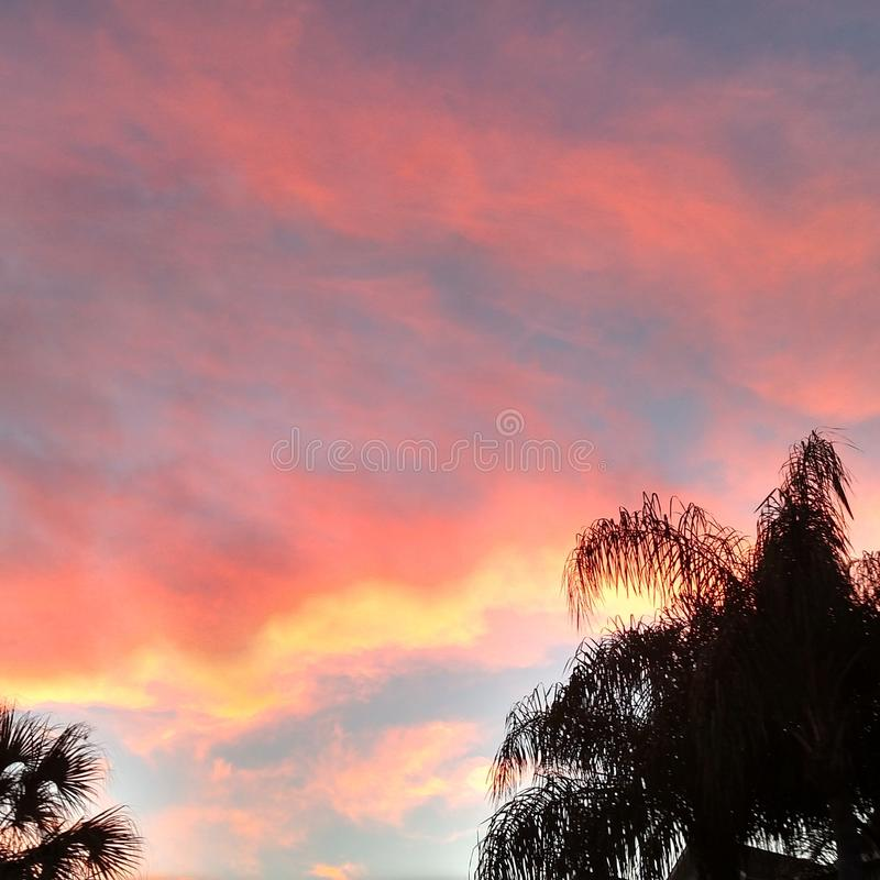 Небо конфеты хлопка стоковая фотография rf