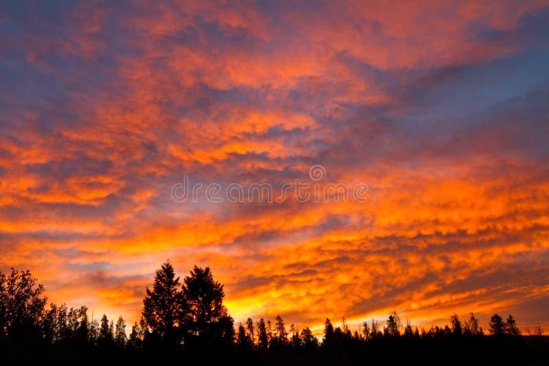 Небо красного цвета огня стоковая фотография