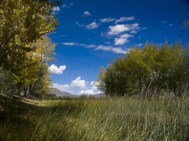 Небо Лхасы стоковая фотография rf