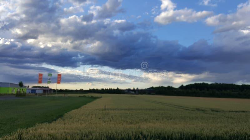 небо мухы стоковое изображение rf