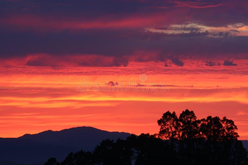 Небо на огне! стоковые изображения