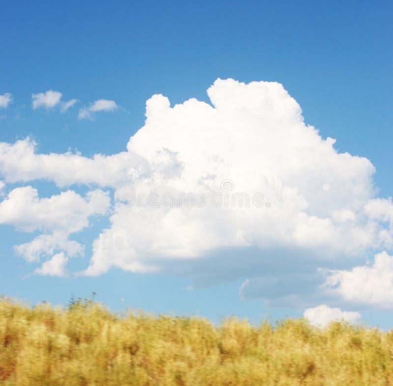 небо облака стоковые изображения