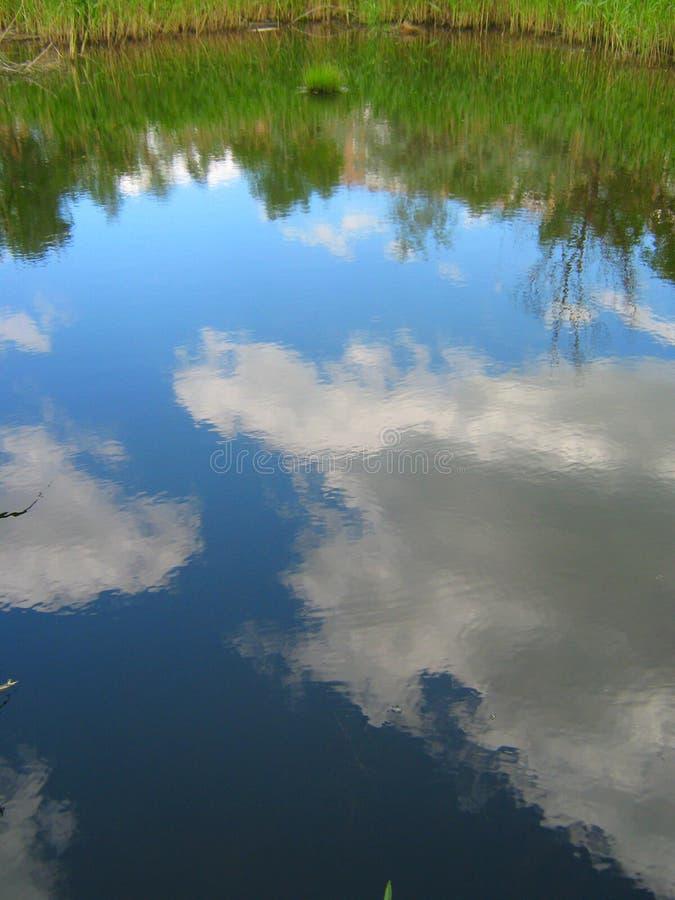 Небо отразило в воде реки стоковая фотография rf