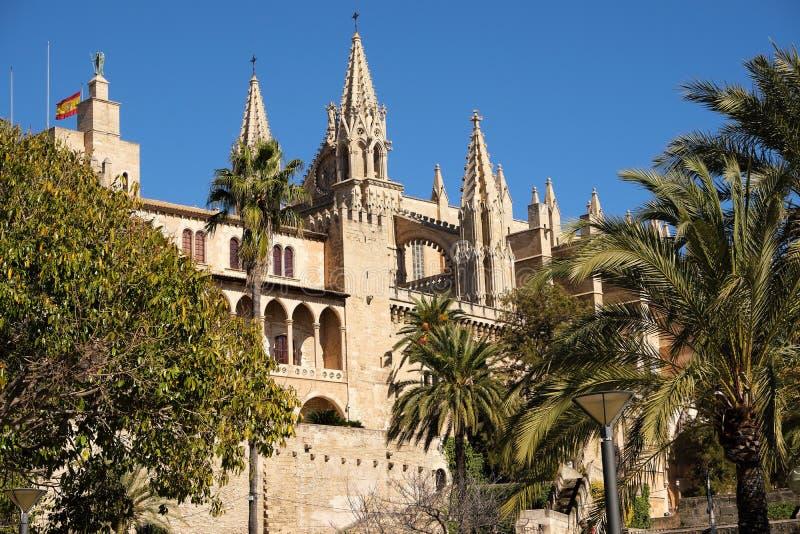 Небо пальм взгляда со стороны Seu Ла Santa Maria собора Palma Мальорка голубое солнечное стоковые изображения rf