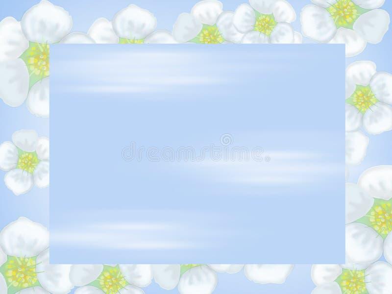 Небо против предпосылки белых цветков бесплатная иллюстрация