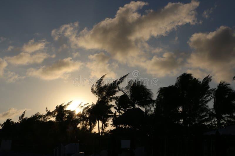 Небо пляжа стоковые изображения rf