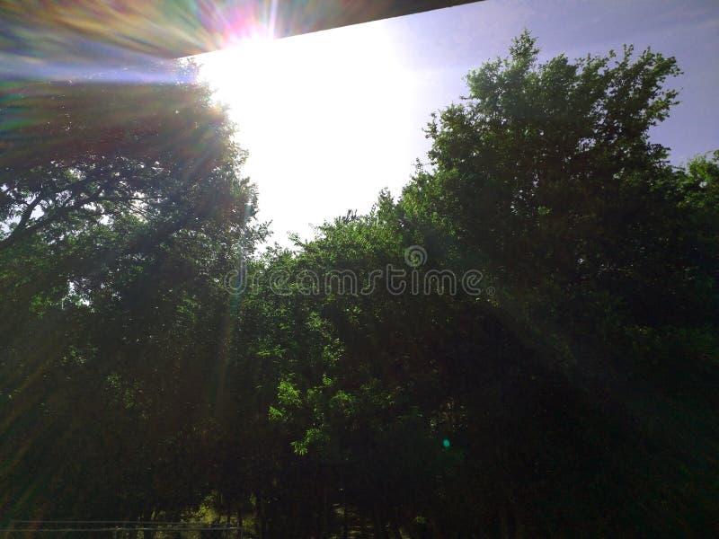 небо солнечное стоковые фото