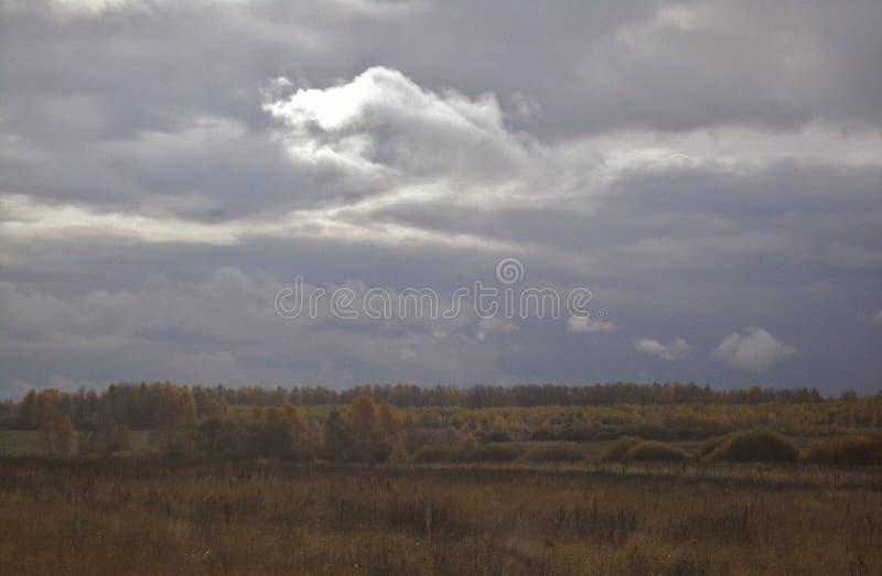 Небо с облаками шторма стоковые изображения rf