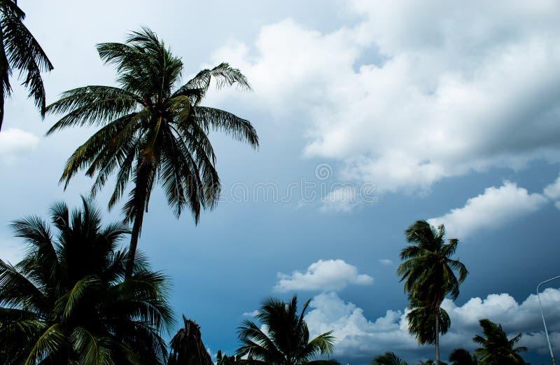 Небо с overcast облаков в дневном времени стоковая фотография