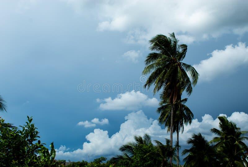 Небо с overcast облаков в дневном времени стоковое фото