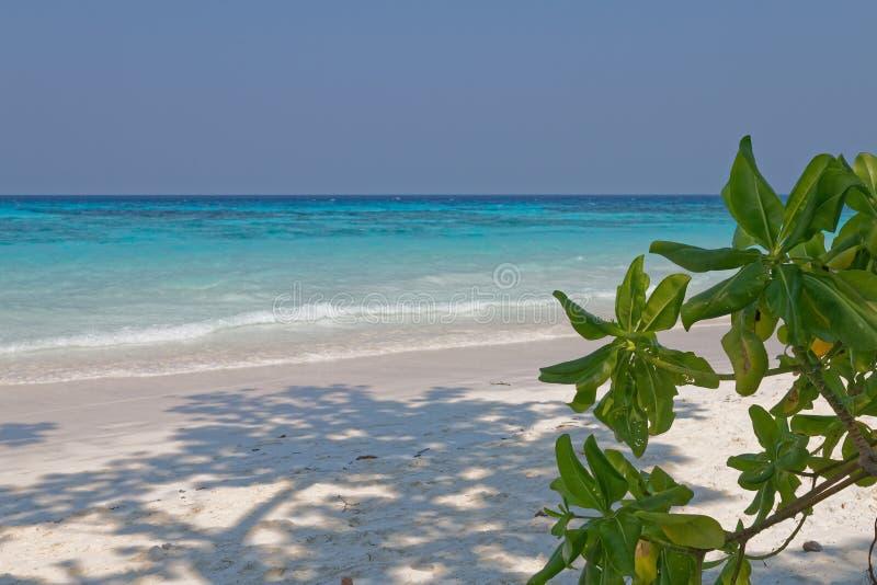 Небо Таиланд Пхукет пляжа острова Tachai красивое ясное стоковое фото